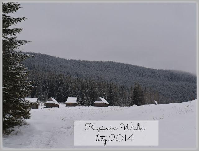 http://www.rudazwyboru.pl/2014/03/kopieniec-wielki-zima.html