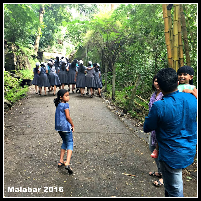 Kerala School Tour