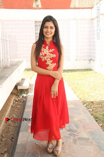 Telugu Actress Priyanka Jain Stills in Red Dress at Amazing Arts Production no 1 Movie Opening  0028.JPG