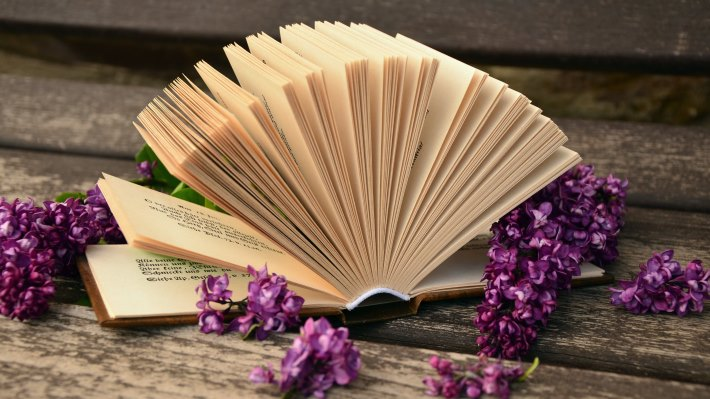 Wallpaper 3: Lilac Flowers and a Good Book