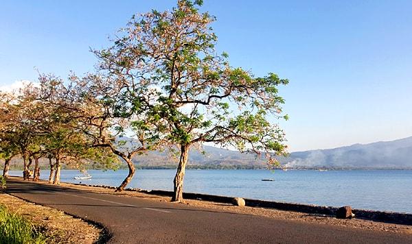 Sakura Kalabahi Beach Alor Island