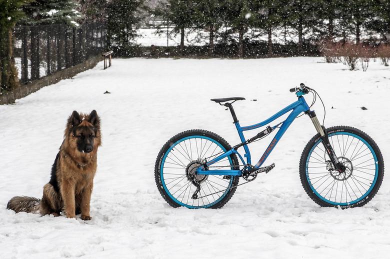 New Bike: Dartmoor Blackbird Enduro Prototype | Arm Crank