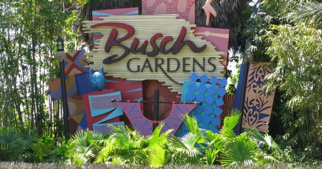 Fun Things To Do With Kids Busch Gardens Tampa Florida