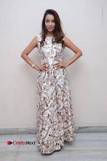 Telugu Actress Reshmi Thakur in Long Dress at Plus One ( 1) Audio Launch  0073.jpg