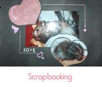 Scrapbooking: et si on chouchoutait nos photos