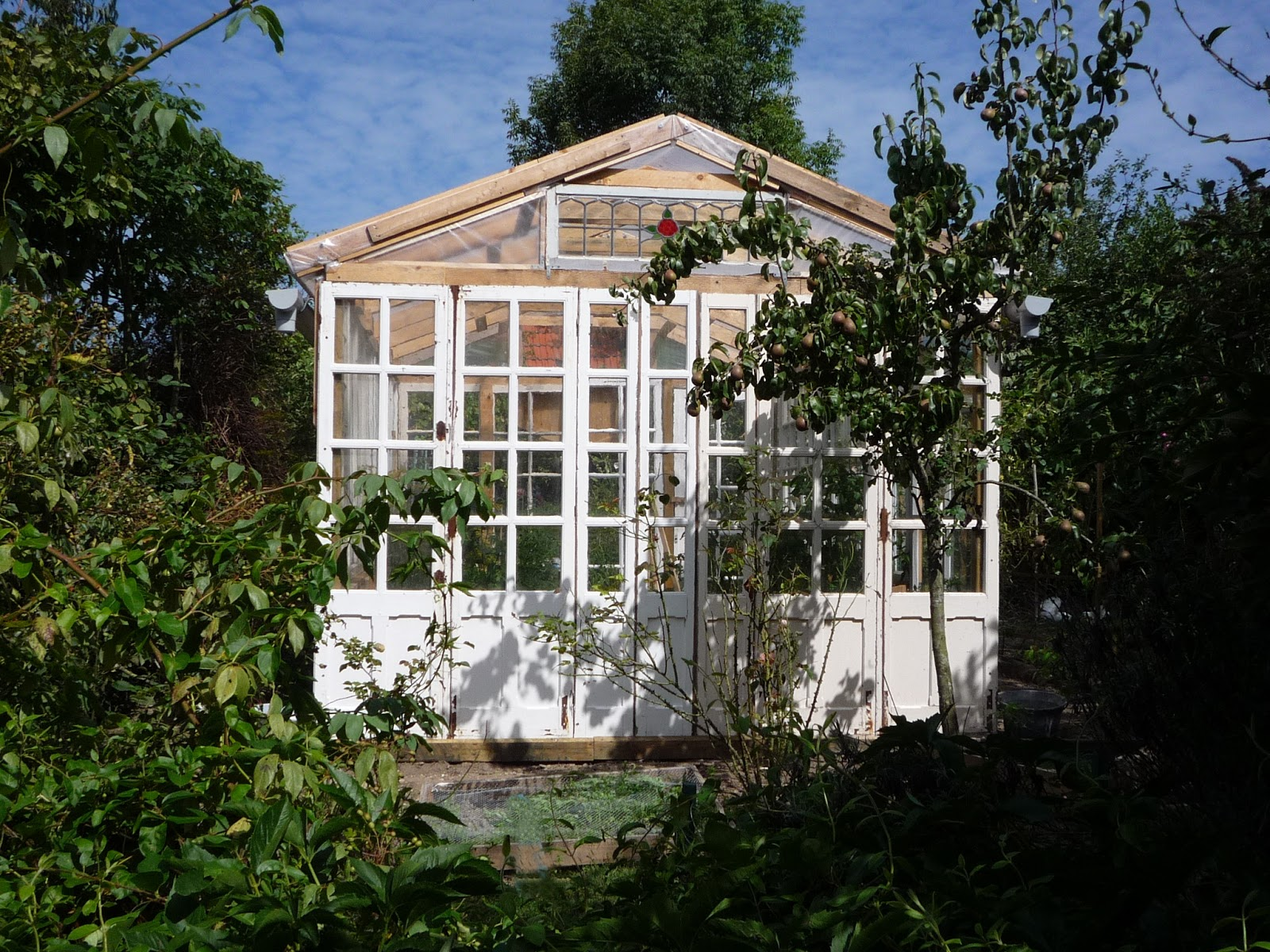 home made big low cost glass greenhouse from free recuperated