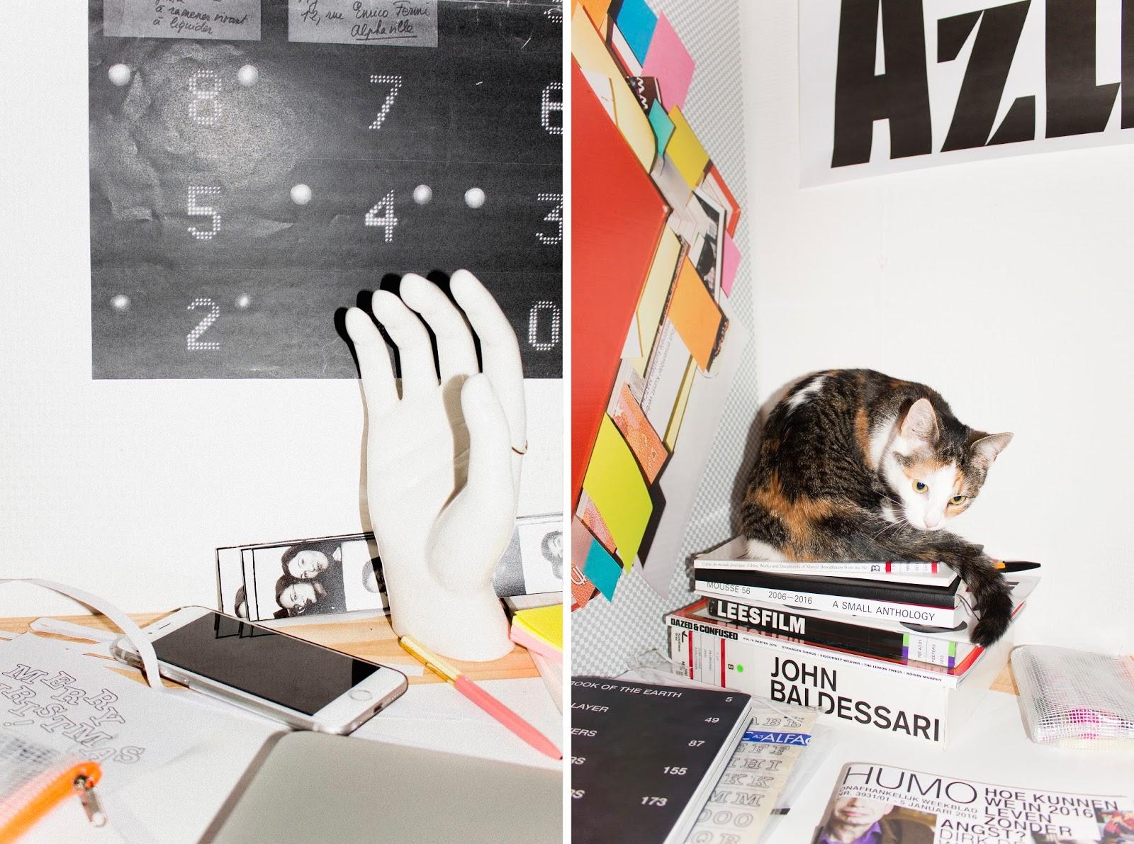 cats, graphic design, doris dave