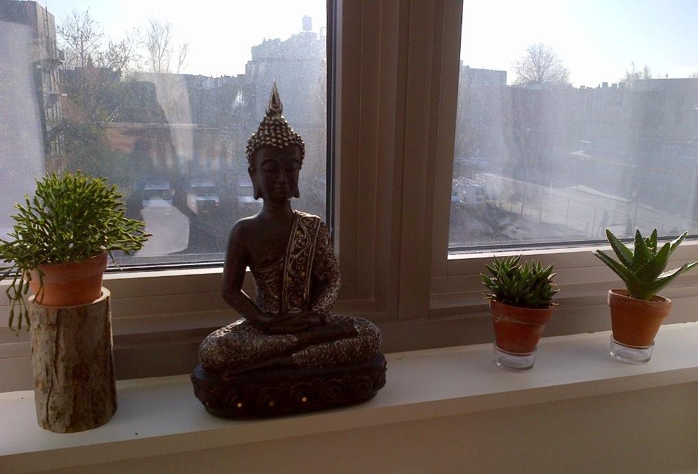 Castaway Nyc Urban Zen Garden