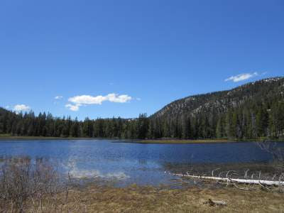 lake, mountain lake, alpine lake, near Hope Valley, California, nature, spiritual nature