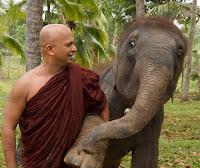 Ven. Uduwe Dhammaloka Thera  an elephant sans a permit,