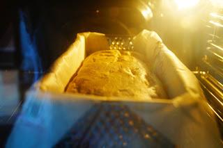 ricetta torta con ricotta