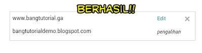 Berhasil Menghubungkan Domain Freenom Ke Blogspot