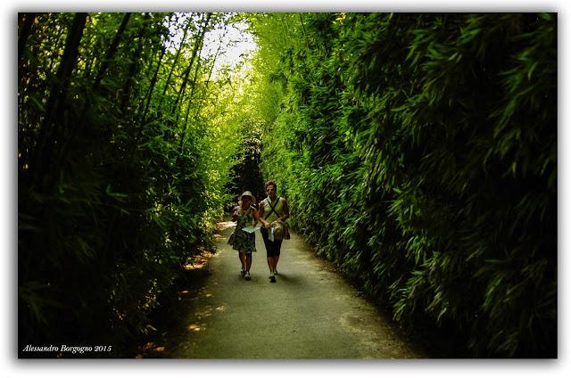 Parma, Labirinto della Masone