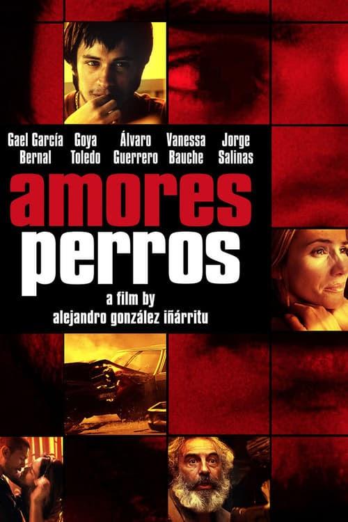 Ver Amores Perros 2000 Online Espanol Latino Pelicula Completa