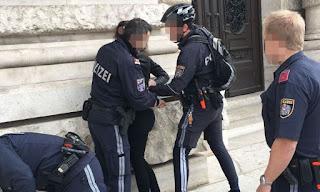 Охрана правопорядка в Австрии