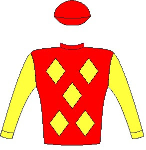 Mr Winsome - Jockey Silks - Red, yellow diamonds, yellow sleeves, red cap - Horse Racing - South Africa - Durban July