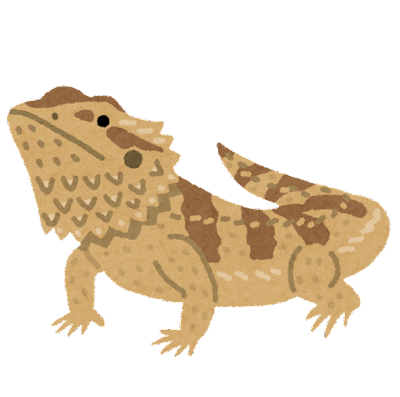 フトアゴヒゲトカゲのイラスト