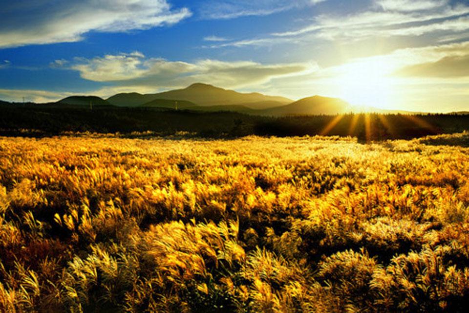 Beautiful Jeju Island In South Korea Korean Hawaii