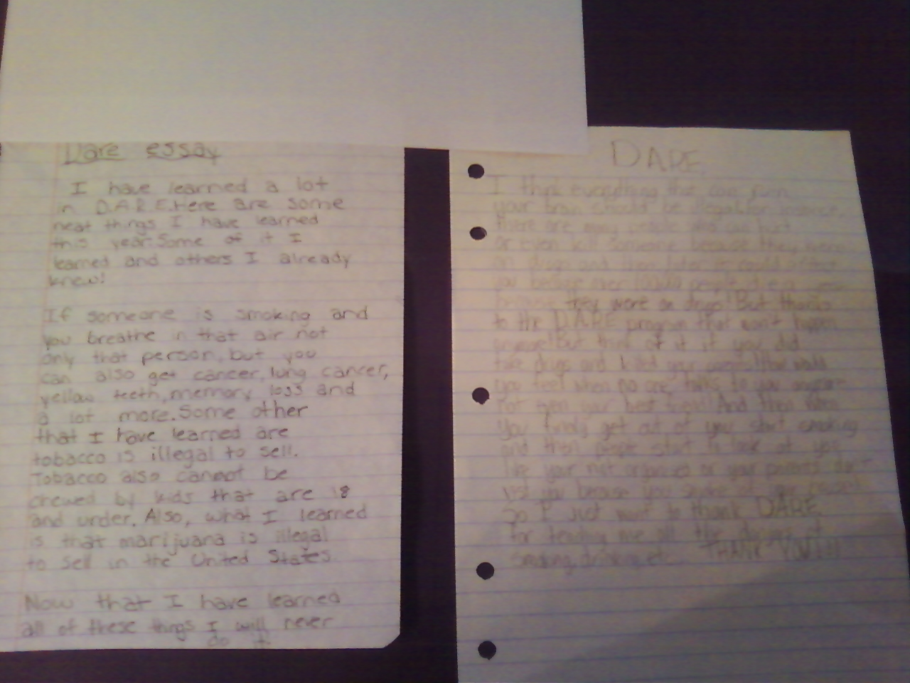 5 Paragraph Essay Example 5Th Grade