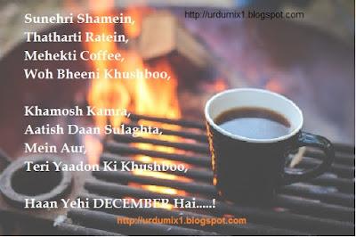 Urdu Poetry, Poetry, december poetry, Romantic Poetry, Shayari, Hindi Shayari, Love Shayari, Urdu Shayari, Love Poetry, Sad Urdu Poetry, Best Urdu Poetry, Love Urdu Poetry