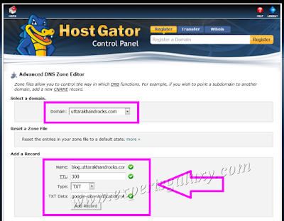 cPanel Hosting TXT Record Creation