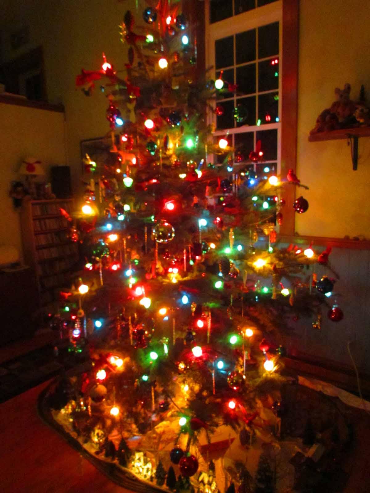 Christmas Tree With No Lights