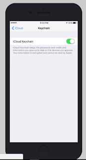 how to enable iCloud Keychain iOS iPhone iPad