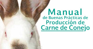 manual-producion-carne-conejos-pdf-descargar-baixar-download