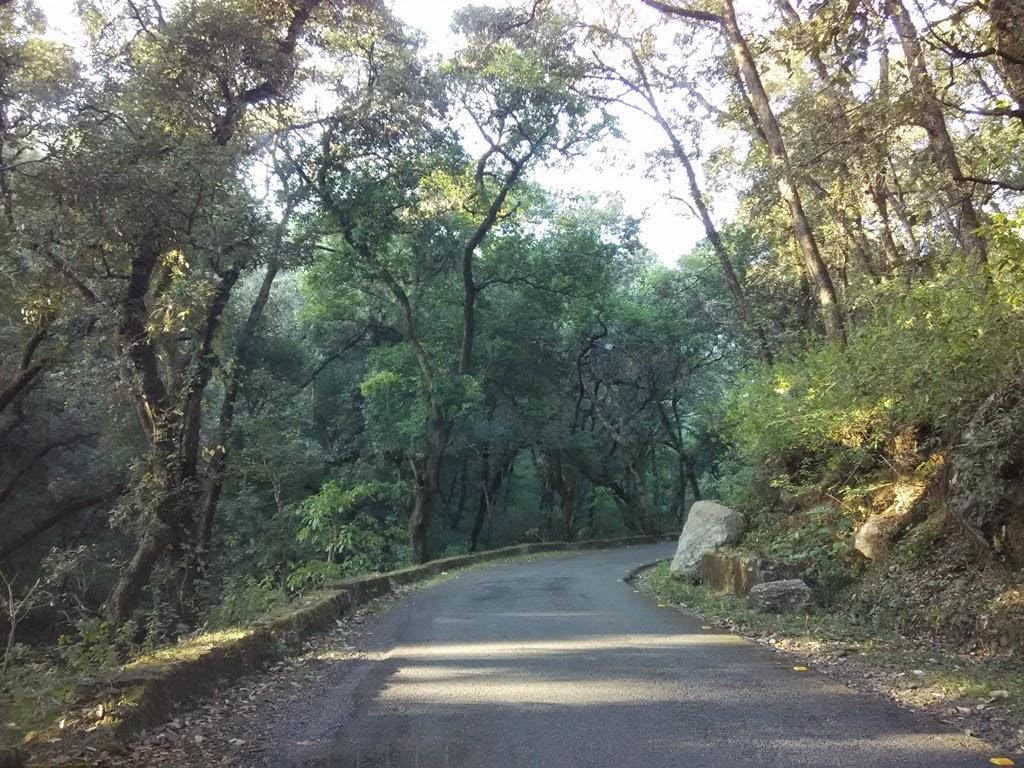 sattal bhimtal road
