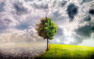 Türkiye'de Kaç Çeşit İklim Vardır Türkiye'de Kaç Tane İklim Görülür Bu İklimlerin Özellikleri Nelerdir? Türkiye De iklim Çeşitleri Yararlı Bilgiler Ülkemizde Kaç Tip İklim Etkilidir Ve Özellikleri Nelerdir?