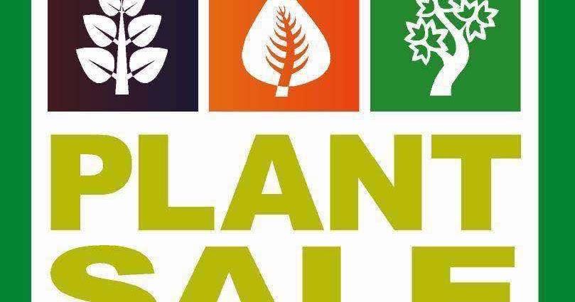 Shoreline Area News Master Gardener Plant Sale Friday Saturday