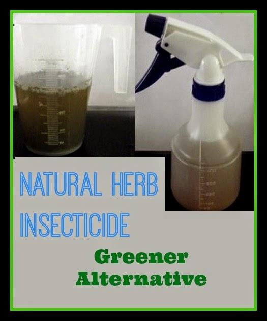Natural Bug Killer Recipe by Fair Dinkum Seeds