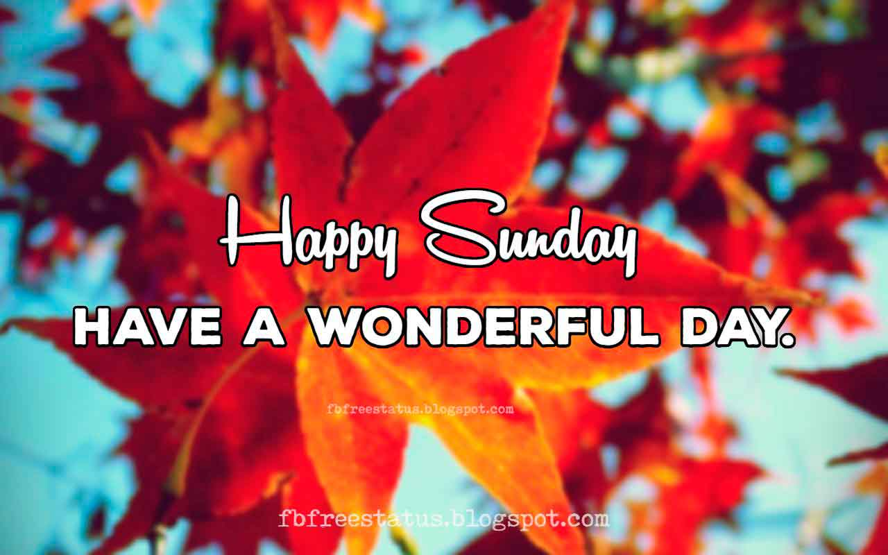Funny & Happy Sunday Quotes to be Happy on Sunday Morning