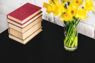 okuduğum kitaplar, okuduklarım, kitap okumak