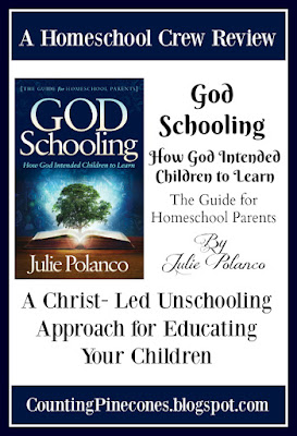 #hsreviews #GodSchooling #ChristianUnschooling #RelaxedHomeschooling