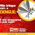 Alerta: Chegada do verão aumenta risco de doenças transmitidas pelo Aedes Aegypti