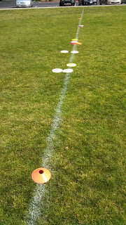 Disc dog toss and fetch distance practice