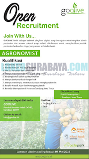 Open Recrutiment Goolive Surabaya Terbaru April 2019