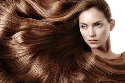 Rambut dan Fungsi Rambut - berbagaireviews.com