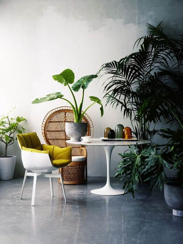 7 Lounges And Dining Rooms With Tropical Style 2