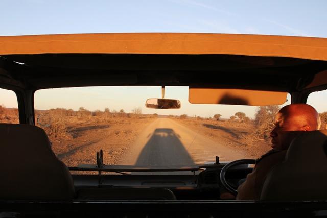 Los guías siempre atentos al resto de los conductores en Kruger