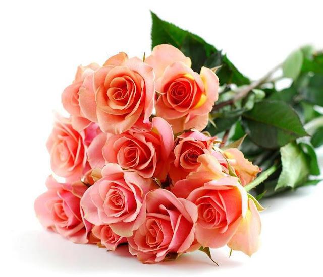 flores para aniversário de casamento
