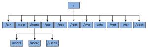 Memahami Fungsi Direktori Sistem Operasi Linux