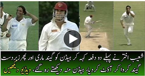 Shoaib Akhtar Best Bowling Against Brad Haddin