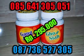 OBAT SIPILIS, GONORE, RAJA SINGA HERBAL DE NATURE