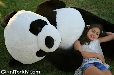 Our Giant Panda Bears are super adorable!