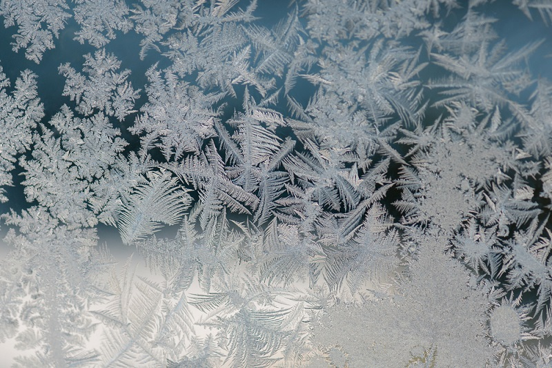 Frosted Window Films