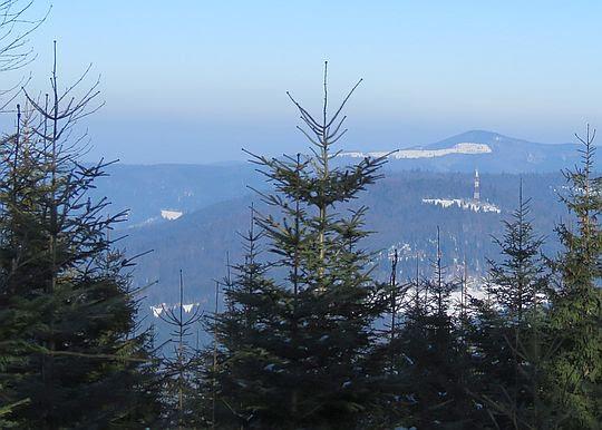 Widok na Kiczorę Kamienicką, Wielki Wwierch i Mogielicę.