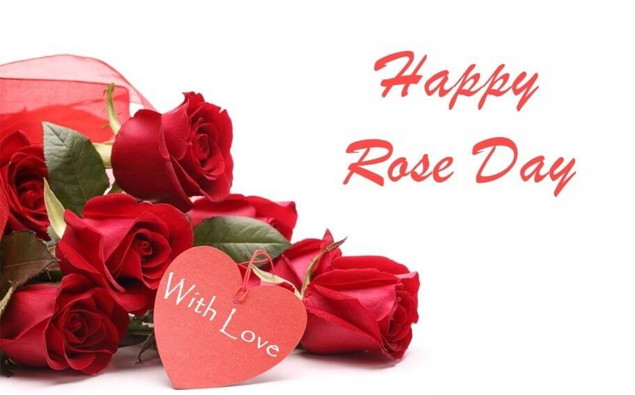 Happy Rose Day HD Images Download