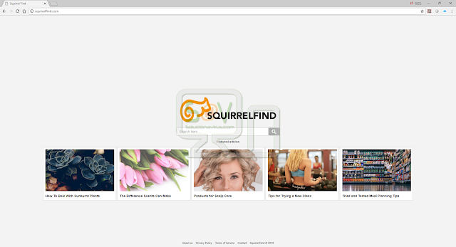 Squirrelfind.com (Hijacker)